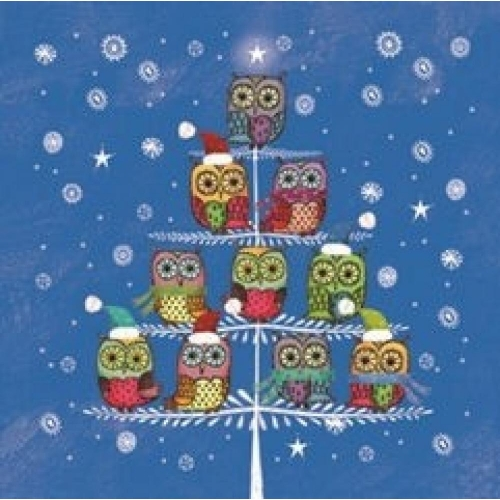 PAW DECOR COLLECTION Salvetes 25x25cm winter owlies zilas